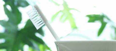 歯ブラシをご持参ください